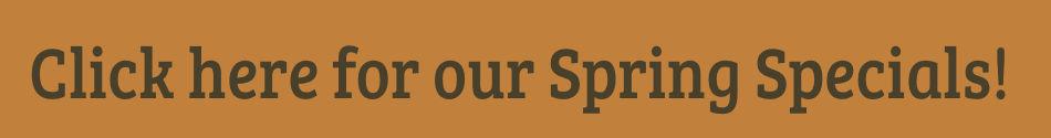 Wagyu Spring Specials